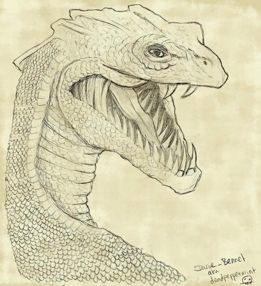 Basilisk Harry Potter Drawing
