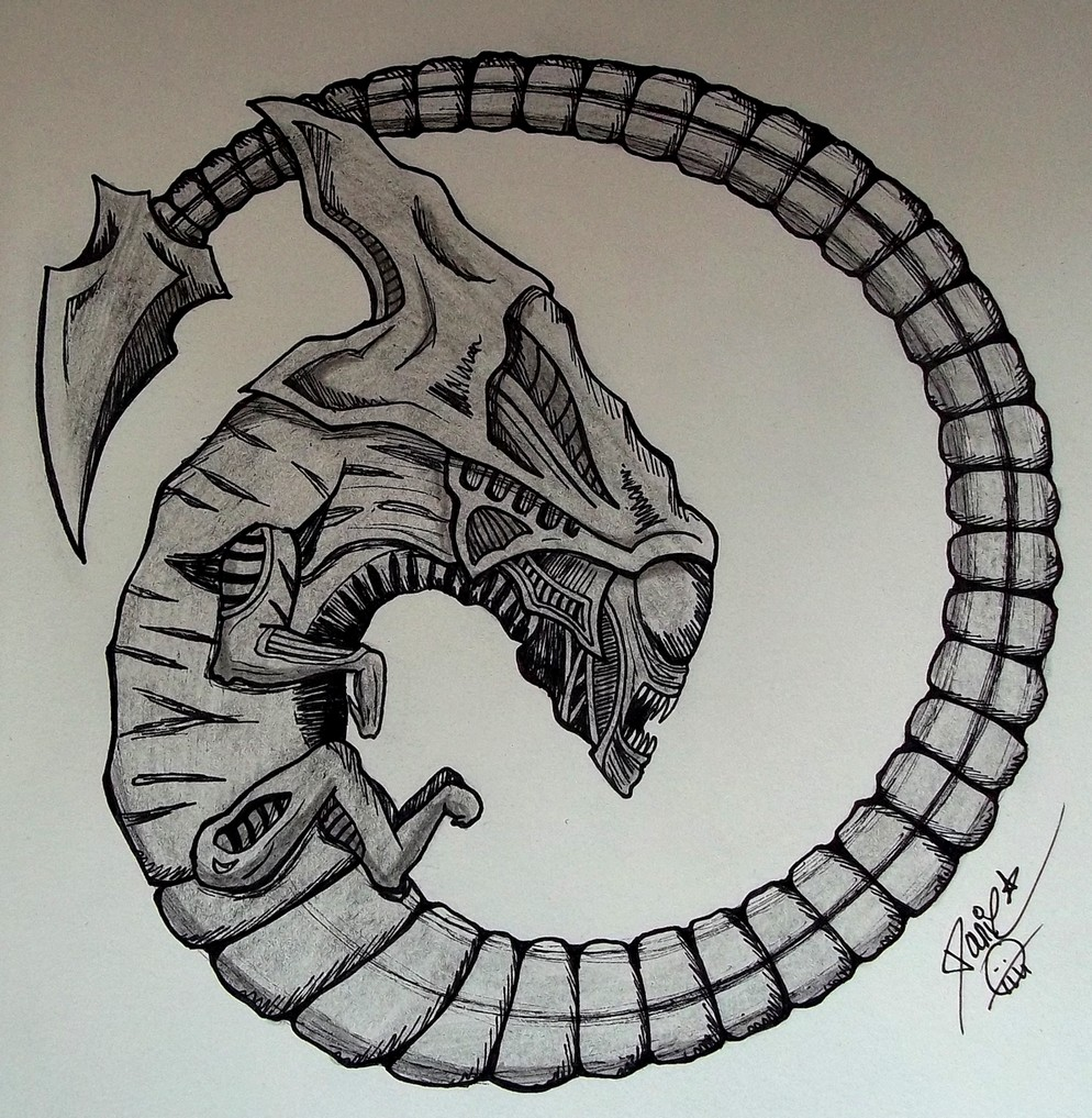 Image Gallery Chestburster Drawings
