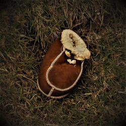 A Lost Shoe