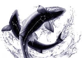 Pisces by chriskoehler