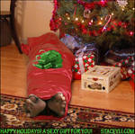 Sexy Christmas Bondage Wrap Present