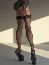 Sexy 3D Legs and Feet in Nylons and High Heels