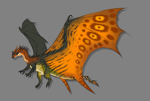 Dragon Adopt 1 CLOSED