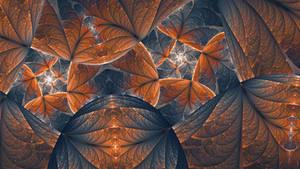 seashells, microcosms