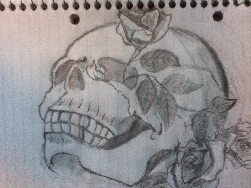 Pencil Drawings Skulls And Roses