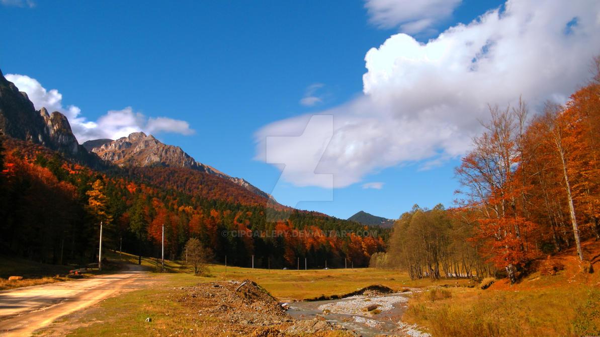 Valea Cerbului - 9 by Cipgallery