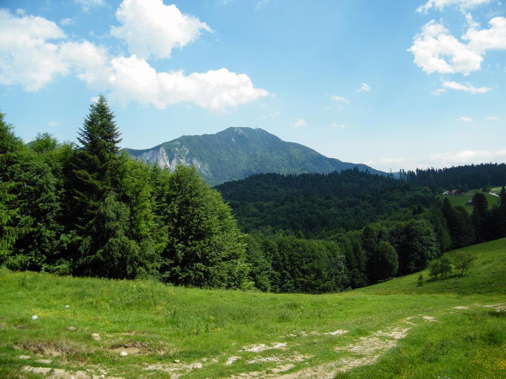 Romania by Cipgallery