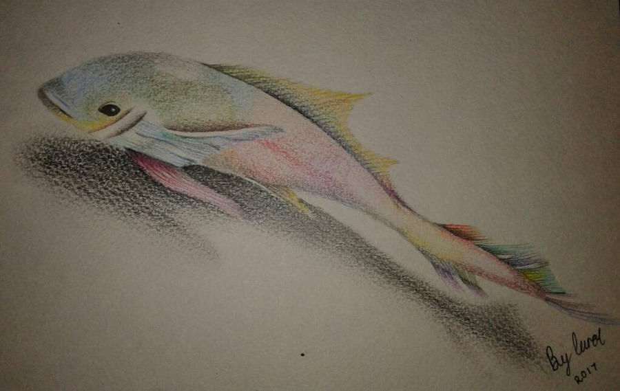 Swimming with the rainbow fish.. by caytindo