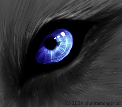 Werewolf Eye by ShadowRider1232 on DeviantArt