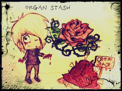 Organ Stash by Elfy17