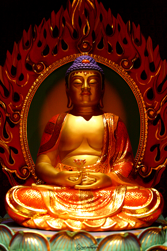 God Gautama Buddha mages, Pics and Snaps for Free Download