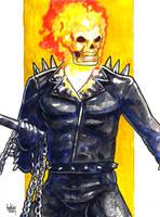 sc MVSC3 Ghost Rider by fedde