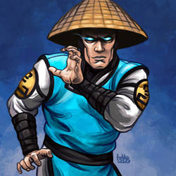 Daily Sketches Raiden by fedde