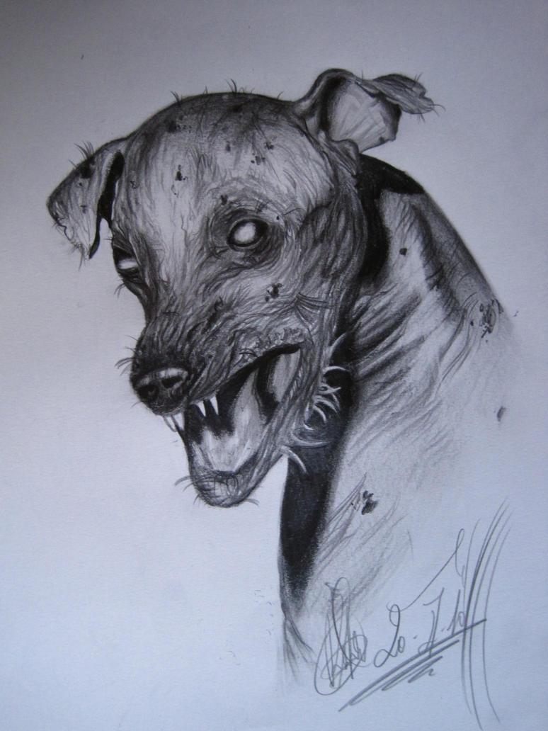 zombie dog....... by RGarabal on DeviantArt