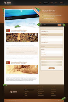 Wordpress Theme I - Sold