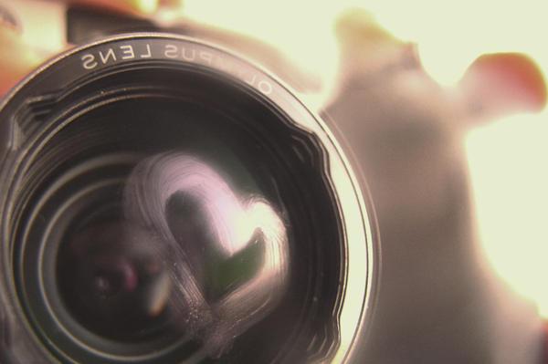 Lens of Love