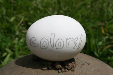 Colors Egg by ZitzabisColors