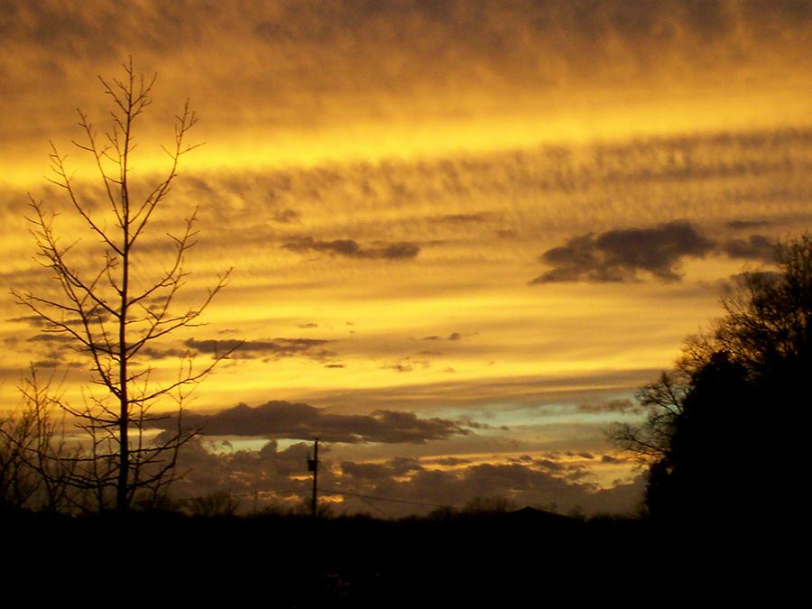 Golden Sunset by avalonaroundtheworld