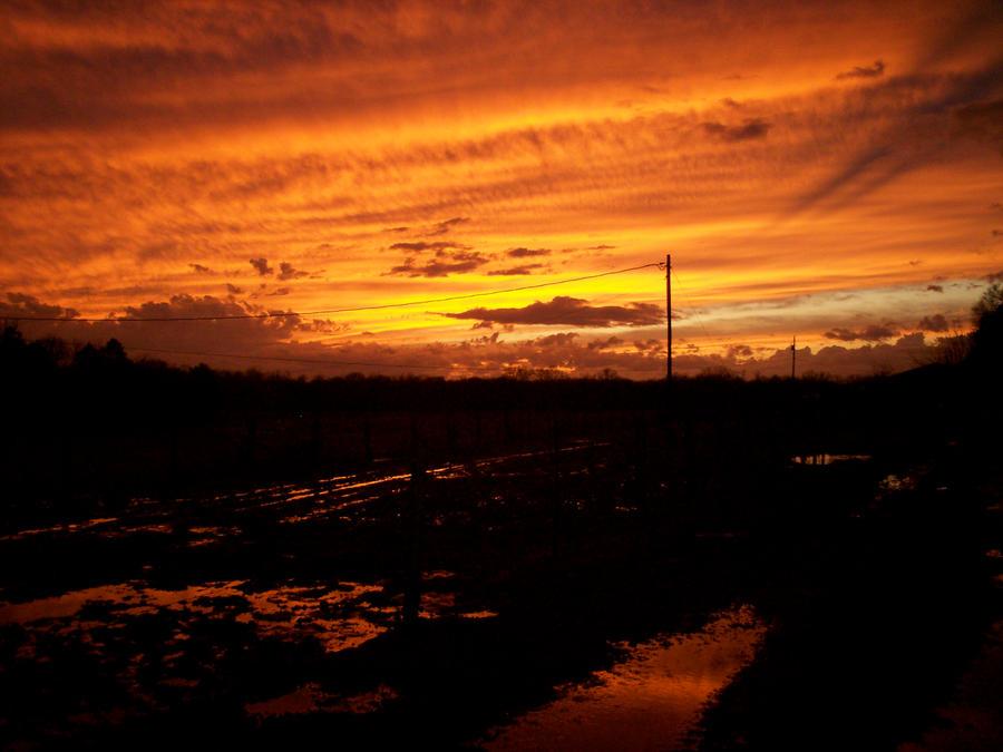 Red at Night by avalonaroundtheworld