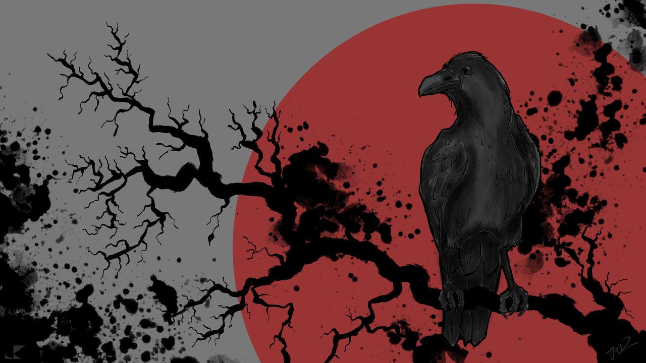 Crow 4k Wallpaper By Savioranooj On Deviantart