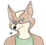 Wary Fox McCloud. *REUPLOAD* by FeelGoodOtter