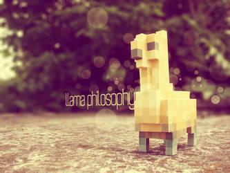 llama:philosophy by vavs
