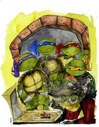 Teenaage Mutant Ninja Turtles
