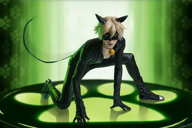 Chat Noir by andreykilik