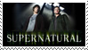 Supernatural by StampCollectors