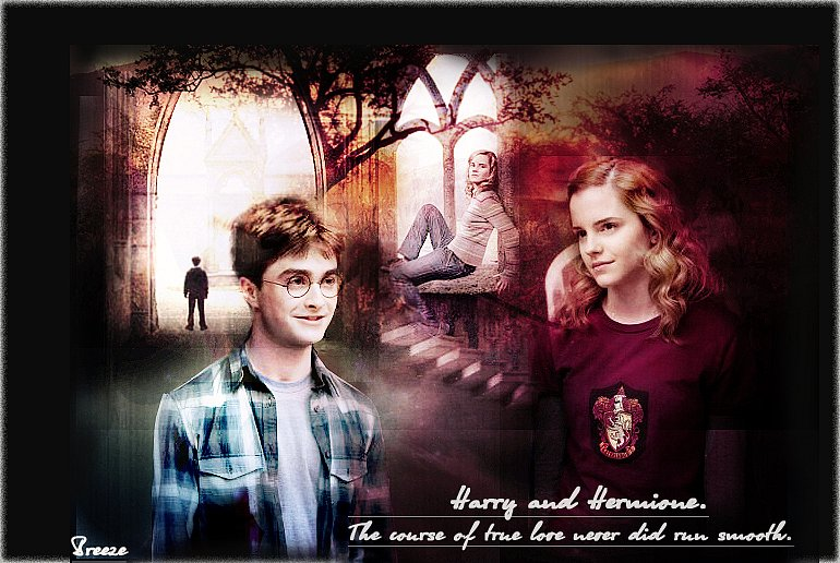 Harry and Hermione by Breeze15-03