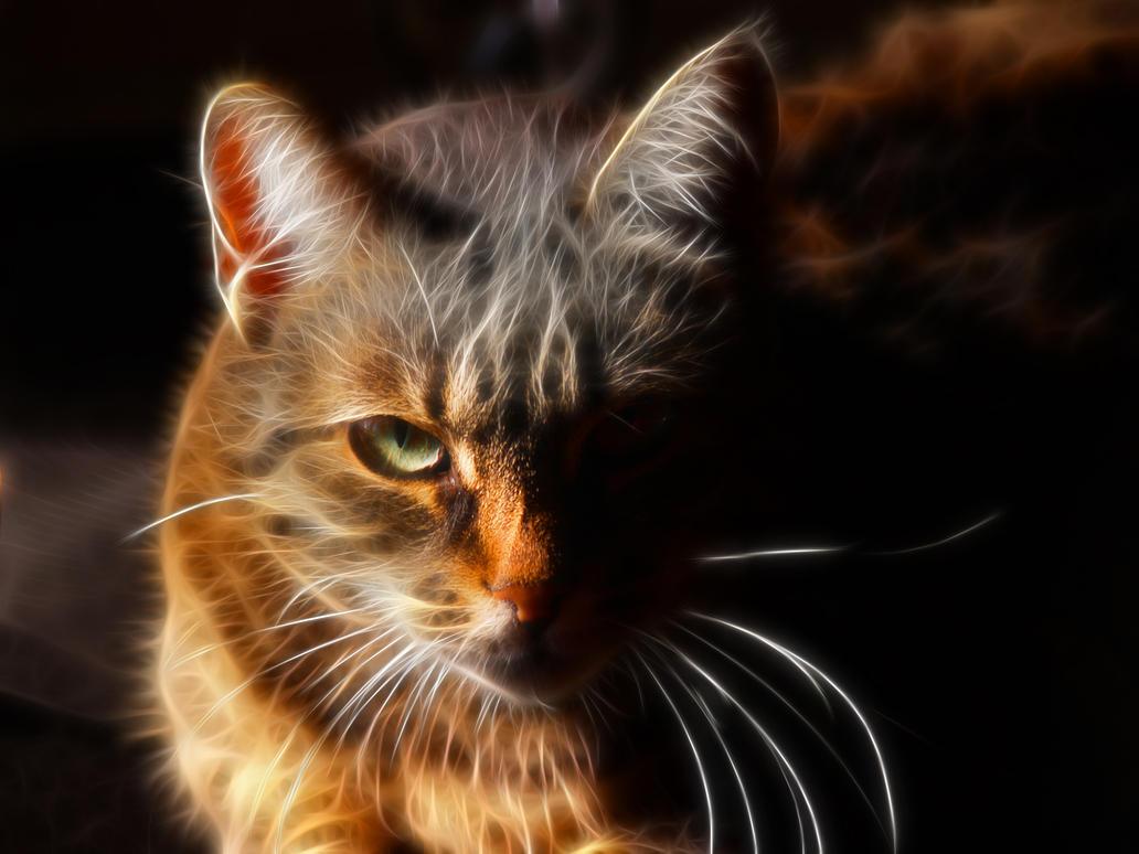 tiger fractal cats e - photo #33