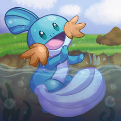 Lil Mudkip  (Pokemon Fanart) by animeangel554