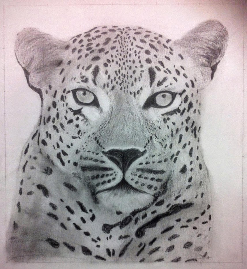 Enlargment of a Leopard made by a grid (pencil) by muzeonline