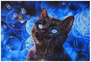 Perfect Blue by mangakasan