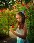 Roses in my garden