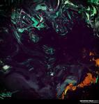 Distortion Fields