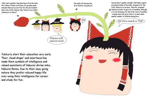 Yukkuri education. Edit.