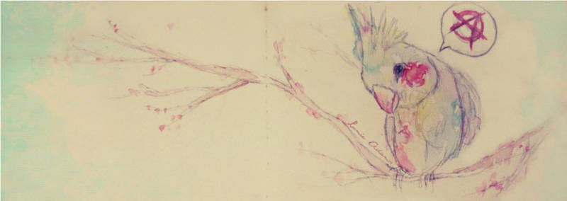 Punkbird