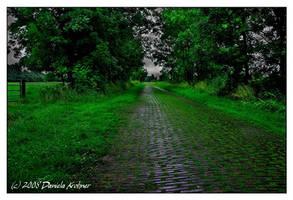 Rainy Summer... by Digitalbaby
