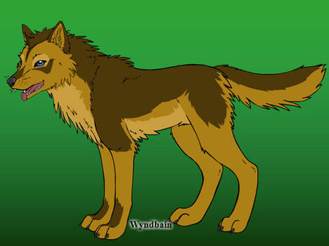 Djargo [own wolf character]