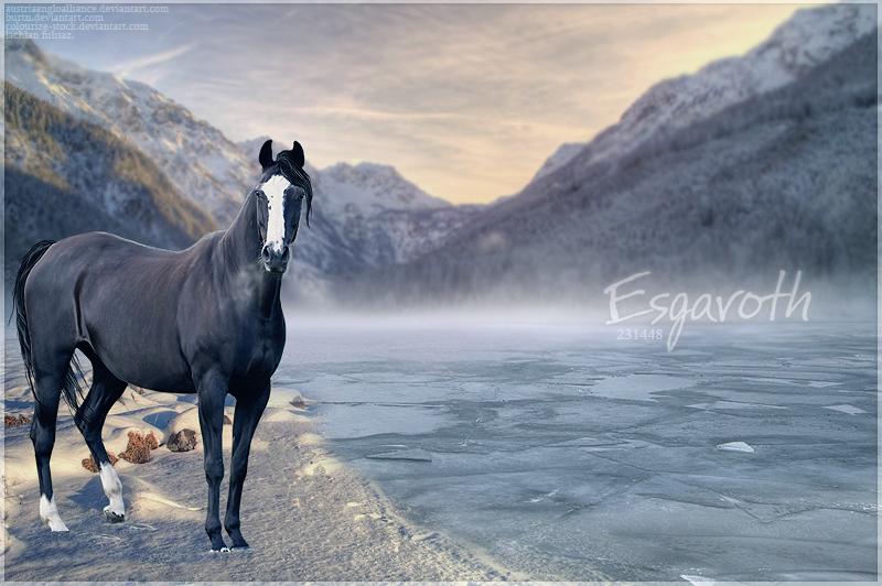 Custom - Esgaroth by lachlan-fuhsaz