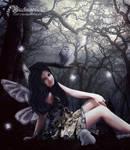 The wood fairy
