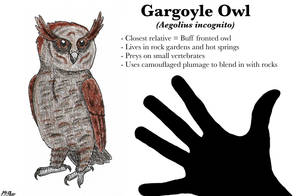 Gargoyle Owl (Lost World Spec Challenge)