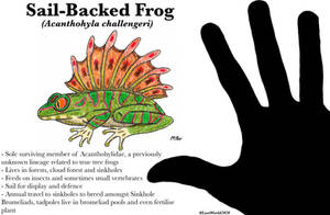 Sail-Backed Frog (Lost World Spec Challenge)