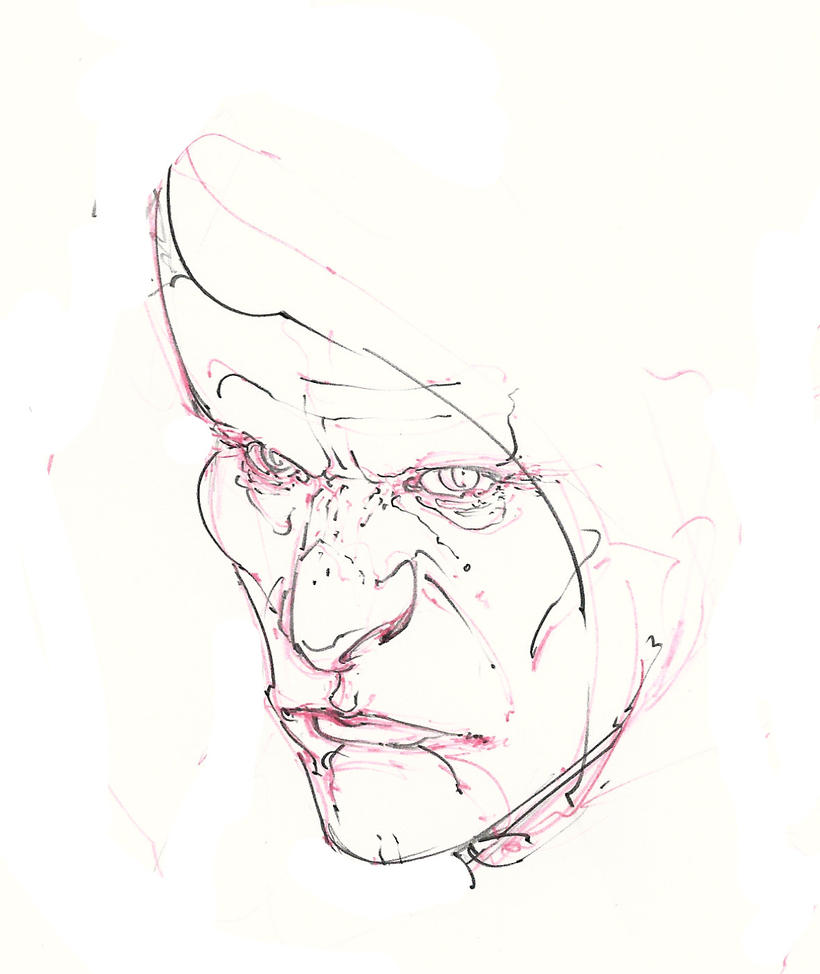 necromancer ..head ! :D by Selkirk