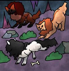 Jan Cave 4