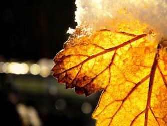 gold leaf by LiLa-fLies