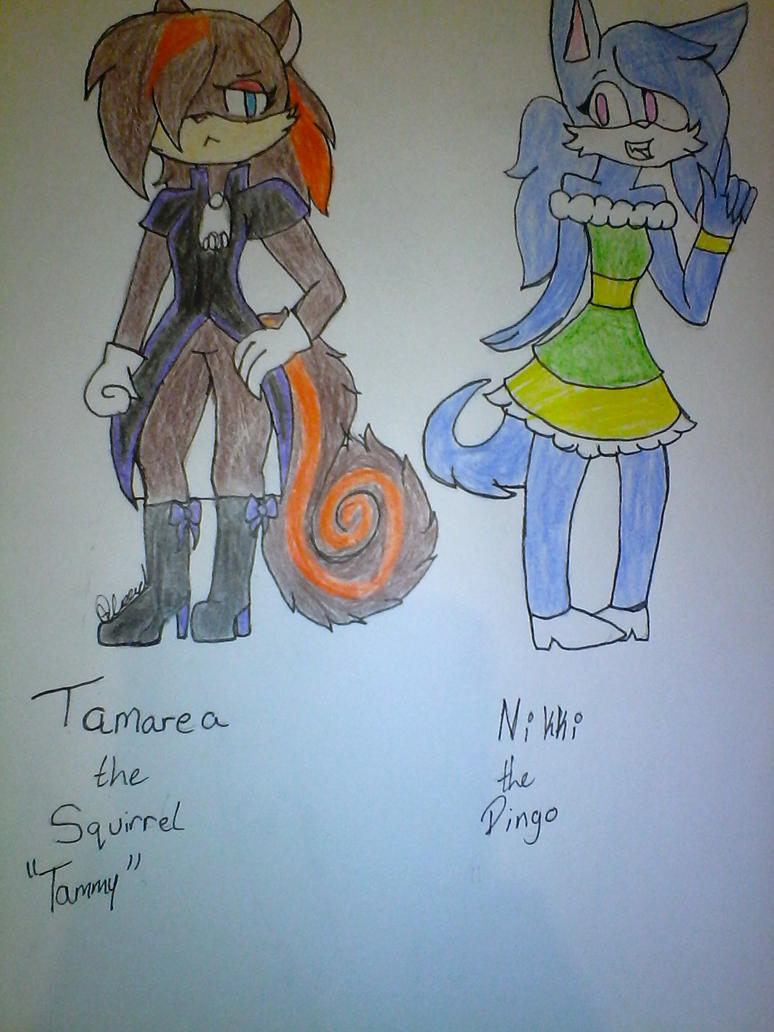 My sonic Characters by Illiterate-Swine