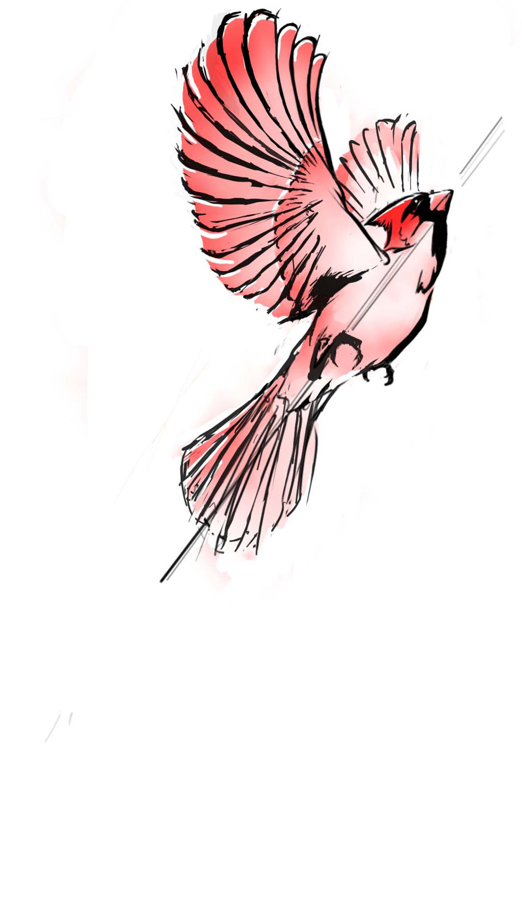Cardinal Tattoo by MikeBourbeauArtWatercolor Flying Bird Tattoo