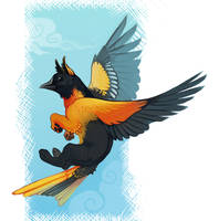 Baltimore Oriole Gryphon by demicoeur